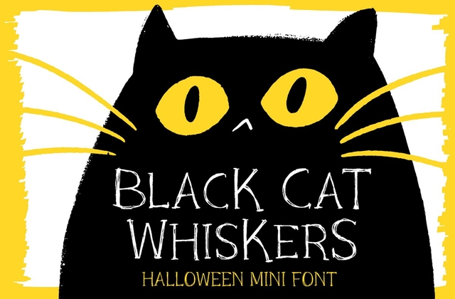 Black Cat Whiskers